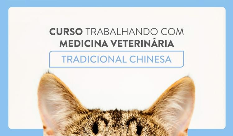 Novo curso aborda questões sobre o mercado da MVTC no Brasil